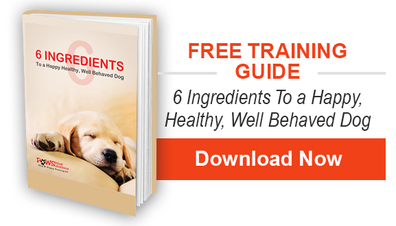 6 Ingriendts to a Happy, Healty, Well-behaved Dog Ebook