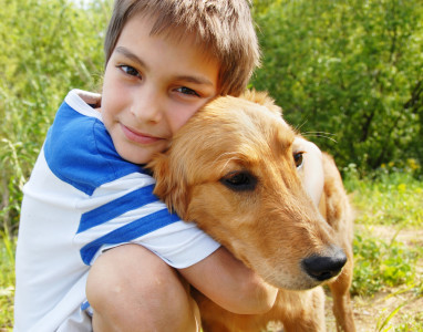 dog with boy