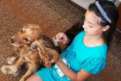 girl brushing dog 2