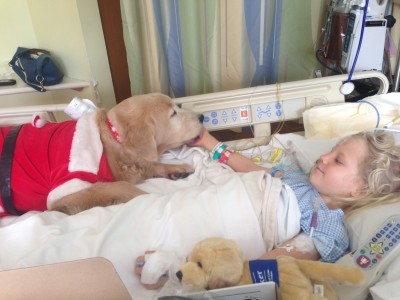 girl in hospital therapy dog