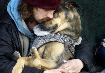dog_love-671x470